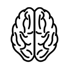 Health Benefits Brain